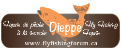 Dieppe Fly Fishing Forum